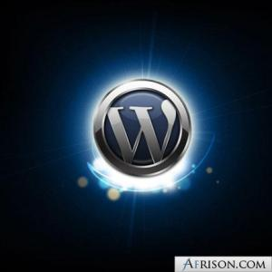 wordpress-logo-shine1